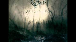 Opeth:the leper affinity