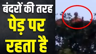 UP के 'बंदरिया बाबा' से पुलिस परेशान, पेड़ पर ही गुजारते हैं दिन और रात