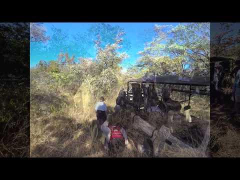 Rhino walk in Matopos with Camp Amalinda