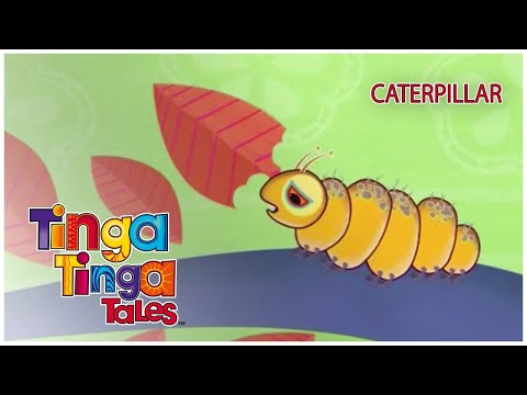 Why Is The Caterpillar So Slow? | Tinga Tinga Tales Official | Full Episode | Cartoons for Kids