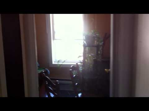49 Beaumont Ave, Grand Falls-Windsor. NL 2 Bedroom Upstairs Apt