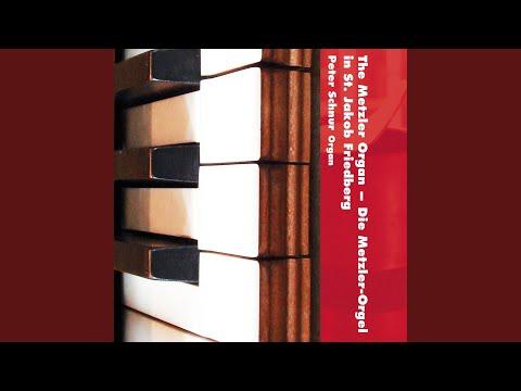 Apparatus Musico-organisticus: I. —