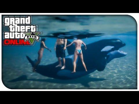 "GTA 5 Xbox One / PS4 - ""PLAY AS A KILLER WHALE!"" (New Online Custom Game Mode Idea) [GTA V]"