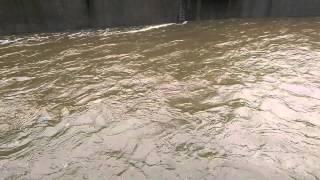 Los Angeles flood