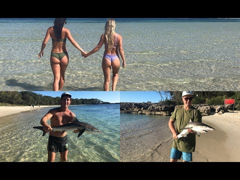 CATCHING SHARKS AT JERVIS BAY