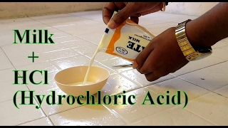 experiment must watch   milk hcl hydrochloric acid reaction