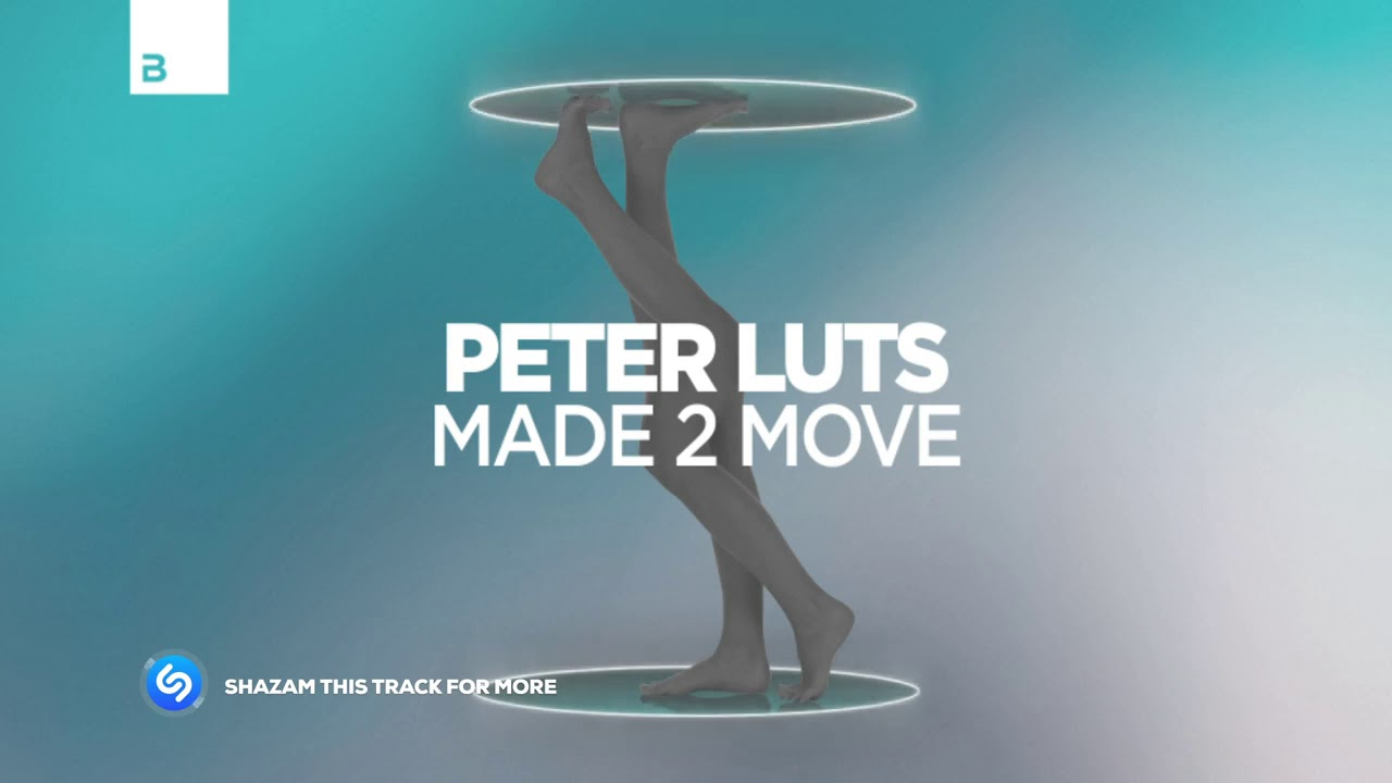 Peter Luts - Made 2 Move
