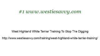 How-To Train A Westie