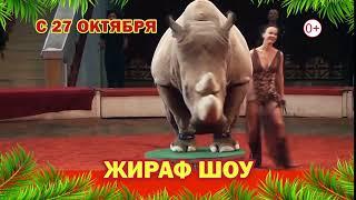Волгоград Жираф Шоу