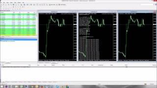 Double Trader for Loss Recovery Trader
