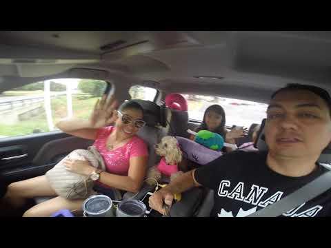 Nuestra Experiencia De Viaje Por Carretera De Mexico A Canada