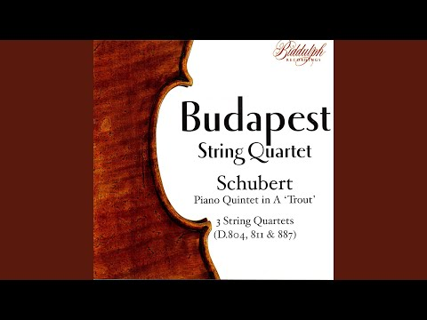 Piano Quintet In A, D 667, 'Trout': II. Andante
