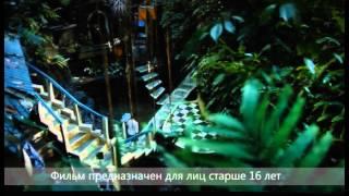 """Закрытый показ фильма """"Духless-2"""""""