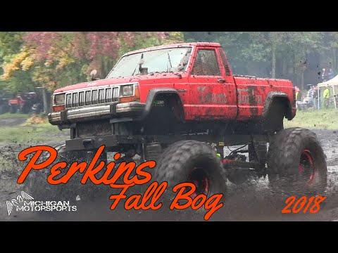 Perkins Fall Bog 2018