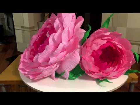 видео: Ростовые цветы своими руками. Как сделать огромный бутон.
