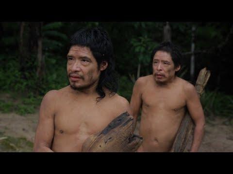 IDFA 2017 | Trailer | Piripkura