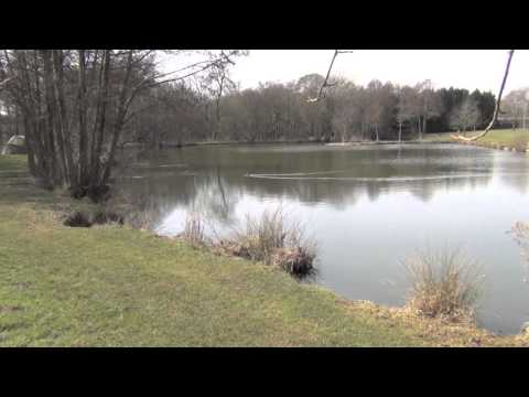 LAKESIDE FISHERY & TOURING CARAVAN PARK, ONEHOUSE, STOWMARKET, SUFFOLK
