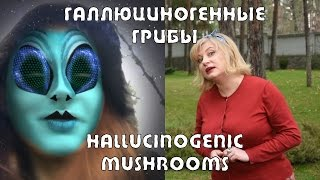 Галлюциногенные грибы - Грибы с Межжериной #03