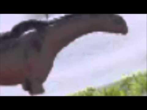 Amazing Paraceratherium Dancing!! | Music Video |