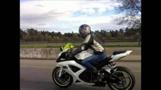 moto blida show