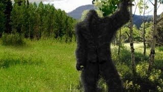 Is Bigfoot abducting people?