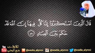 سورة غافر كاملة _  للقارئ وديع اليمني