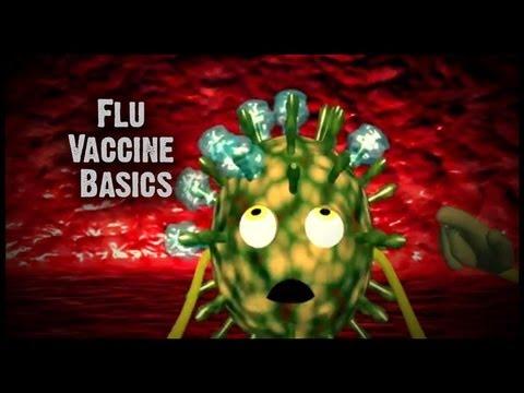 The Flu Vaccine 101