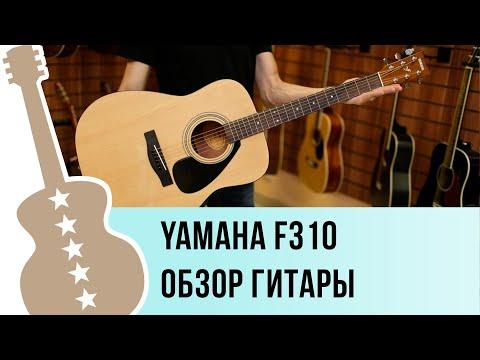 Обзор акустической гитары Yamaha F310