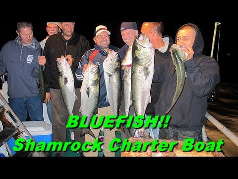 NYC Fishing On The Shamrock Charter Boat In The Long Island Sound