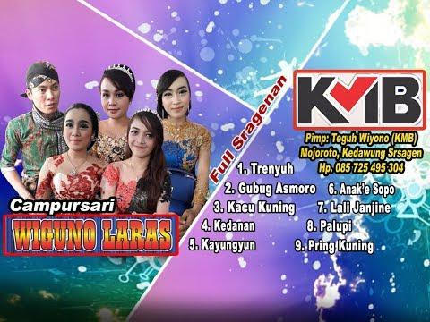Campursari KMB WIGUNO LARAS Full Sragenan live Tirip Lempong Jenawi