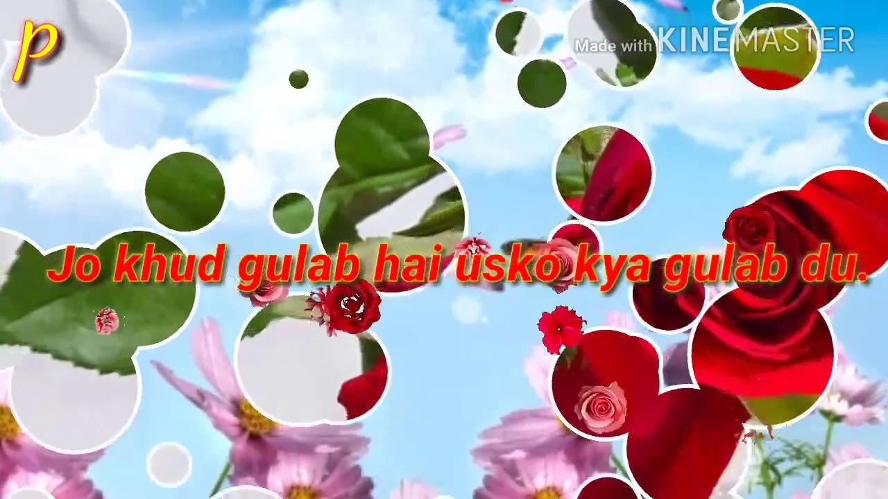 Best Good Morning Romantic Sayari Whatsaap Videowallpaper Animated