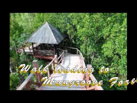 Cagayan de Oro's Lambago Ecoland Tourist Destination