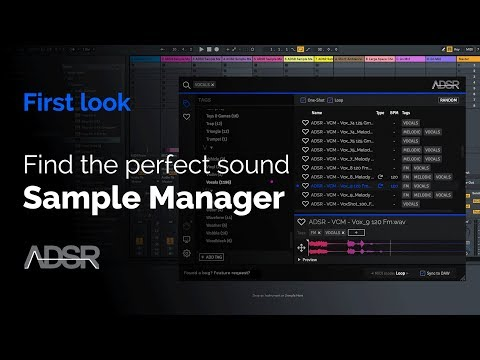 ADSR Sample Manager  First Look with Echo Sound Works  + FREE plugin Download