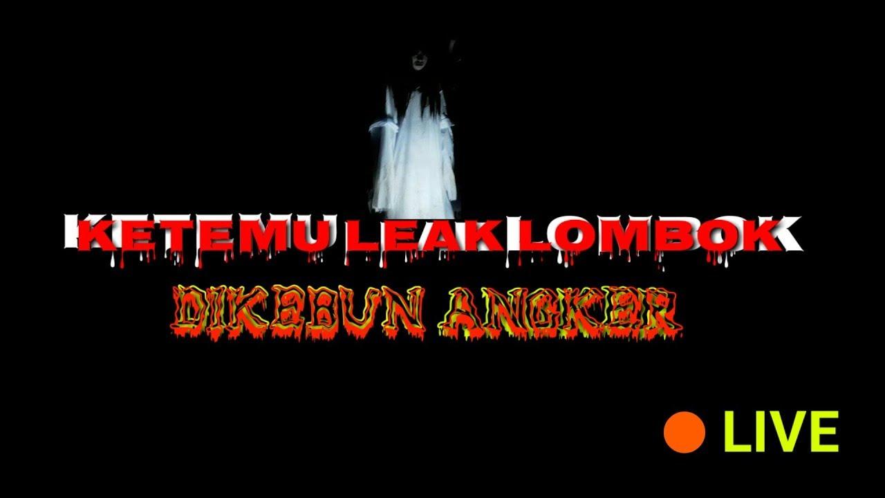 Lombock Stream