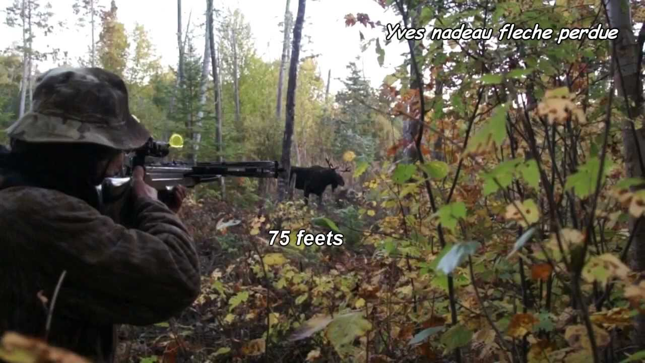 chasse orignal moose hunt top call qu bec canada northam rican hunting comp tition vid o youtube. Black Bedroom Furniture Sets. Home Design Ideas