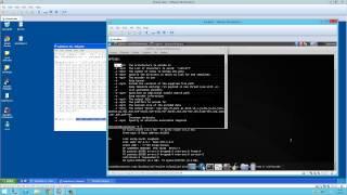 Stack Tabanlı Buffer Overflow Zaafiyeti & Exploit Kodlama