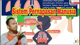 Patofisiologi - Penyakit Refluks Gastroesofageal (Gastroesophageal reflux disease/ GERD).
