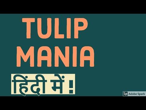 शेयर बाजार क्रैश -तुलिप बबल | Stock market crash -Tulip Bubble in Hindi