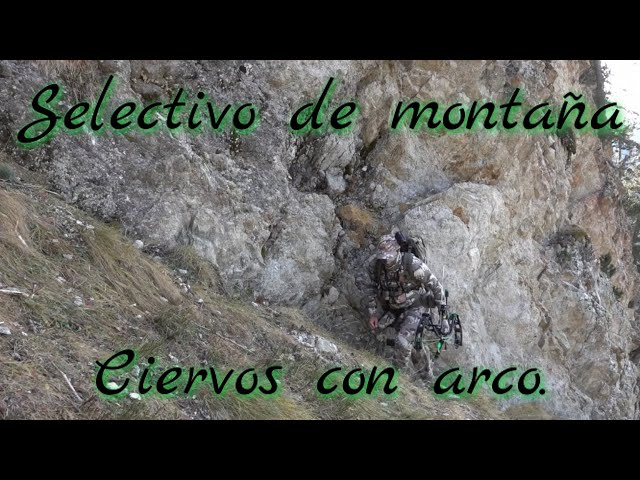 "Caza con arco ""ciervo selectivo en alta montaña "" , Onca gear, Hoyt RX-4 temp 2020/21."