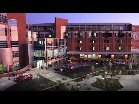 University of Utah - 5 Nightlife Activities for Students