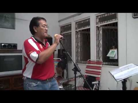 I'll Never Fall In Love Again (cover) - James Ting & The Revivals