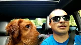 HUGE DOG BONE for Chuy the Golden Retreiver.