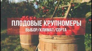 видео Биологические особенности плодовых деревьев