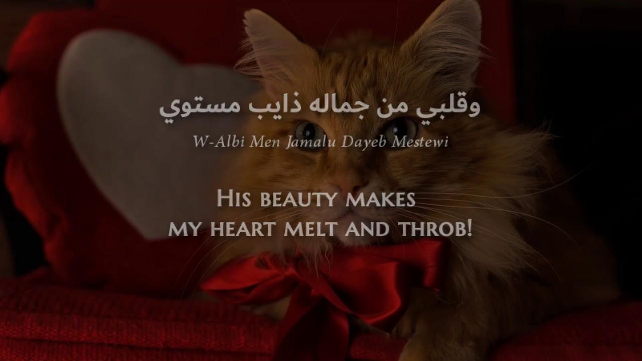 Download Nancy Ajram - Sheik El-ShabaB (Lebanese Arabic) Lyrics + Translation - نانسي عجرم - شيخ الشباب