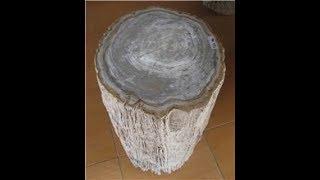 Petrified Wood For Sale | Versteinertes Holz Zu Verkaufen