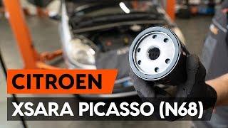 Kako zamenjati oljni filter in motorna olja na CITROEN XSARA PICASSO (N68) [VODIČ AUTODOC]
