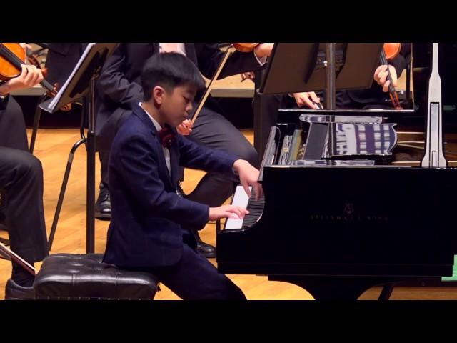 鋼琴:貝多芬  給愛麗絲  L V Beethoven  Für Elise