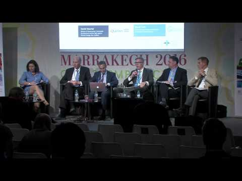 Sectoral Climate Mitigation: Low-Carbon Policies