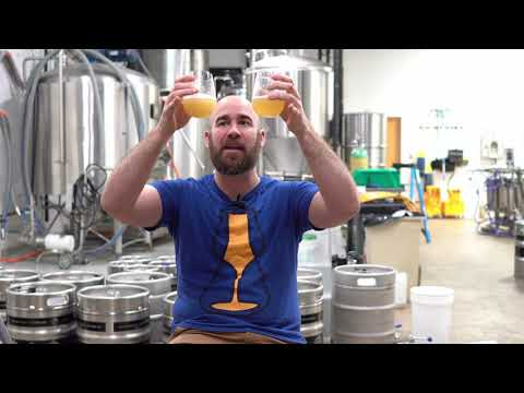 Nelson-Citra Hazy Pale Collab With Black Flag Brewing