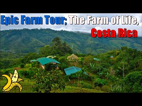 Amazing Farm Tour at The Farm of Life in Costa Rica